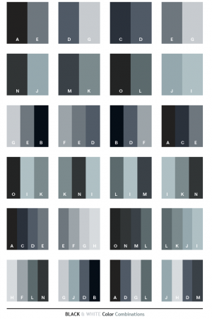 Black and White Color Combinations.png