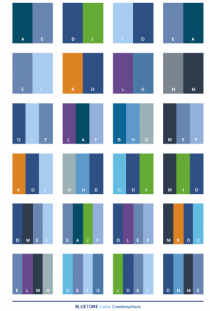 Blue Color Tone Combinations.png