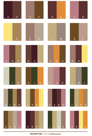 Brown Tone Colro Combinations.png
