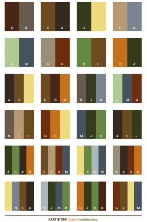 Earth Tone Color Combinations.png