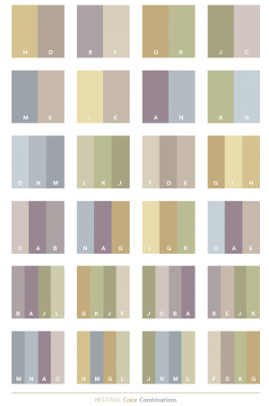 c96-Nuetral Color Combinations.png